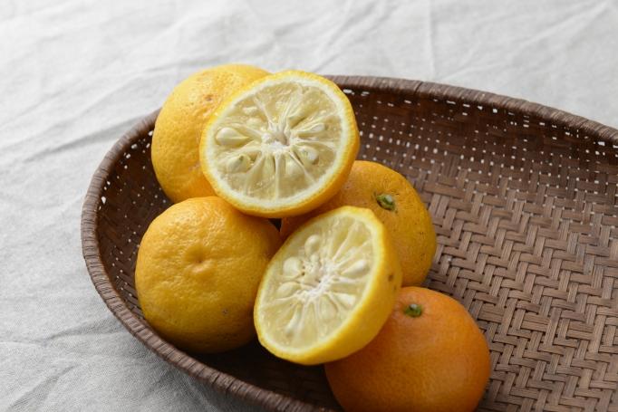 薄く輪切りにした柚子をそのまま浮かべた「柚子鍋」も食欲をそそります!